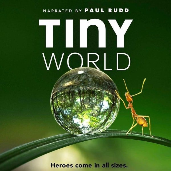 tiny-world